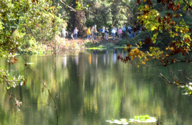 Walkers on a guided tour are reflected in the lake at the Jacksonville Arboretum.  Photo by Stibolt