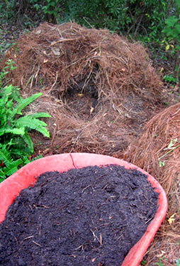 Harvesting compost from the bottom of the pile.  Photo by Stibolt