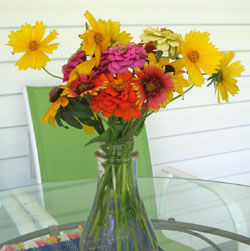 Bouquet from Ginny's yard.  Photo by Stibolt